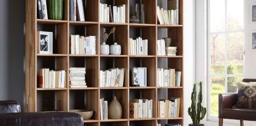 biblioteca. platforma de cautare