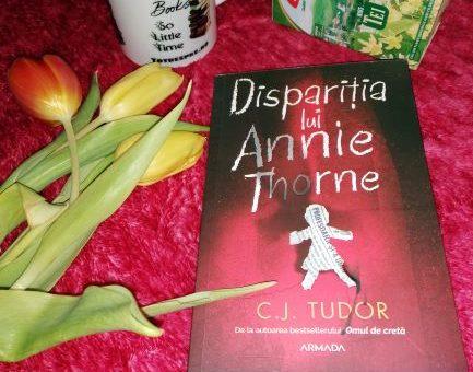 Disparitia lAnne Thorne,recenzie,thriller